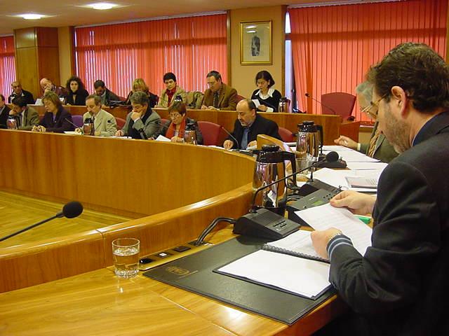 Pleno do Concello (1)