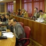 Pleno do Concello (2)